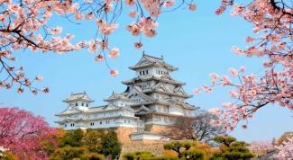 Сколько стоит поехать в Японию
