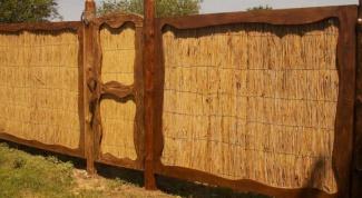 Как сделать забор из камыша