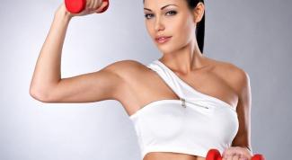 Спортивный инвентарь для рук: гантели, аквагантели, груша, гребной тренажер