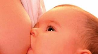 Нужно ли новорожденному давать воду