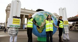 Чем занимается GreenPeace