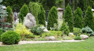 Ландшафтный дизайн участка с использованием колоновидных туй