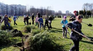 В чем заключается экологическое воспитание школьников