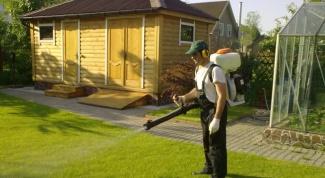 Как выбрать гербициды для газона