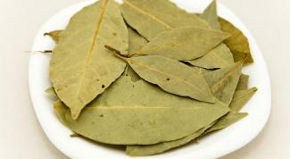 Как добавлять лавровый лист в супы