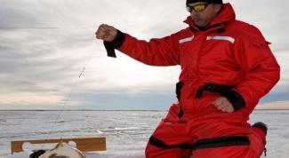 Очки для рыбалки: выбираем без ошибок
