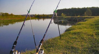 What are the different types of fishing rods
