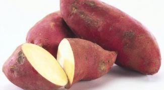 Что лучше употреблять в пищу - картофель или батат