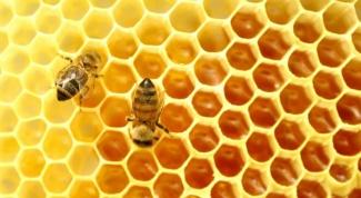 Как применять пчелиный воск
