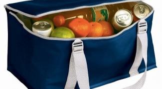 Сколько стоит сумка-холодильник: правила выбора