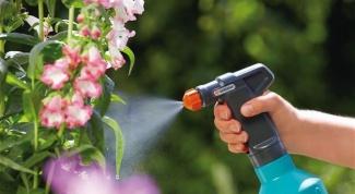 Можно ли поливать огородные растения мыльной водой