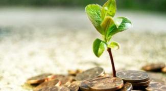 Что такое инвестиционная компания