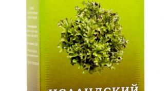 Какие лечебные свойства у исландского мха