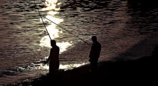 Какую рыбу нельзя ловить в России