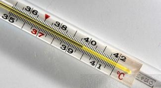 Одинакова ли температура в разных точках нашего тела