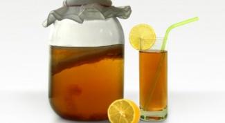Как заваривать грибной чай