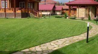 Обустройство каменной дорожки в саду