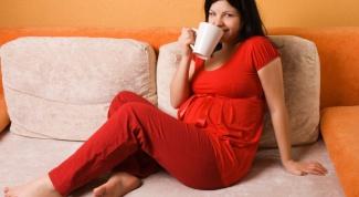 Как принимать сироп корня солодки при беременности
