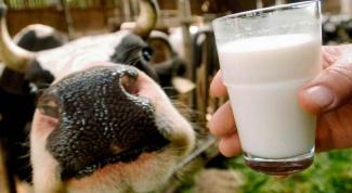 Как выбрать хорошее молоко