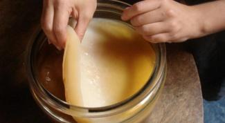 Что можно лечить чайным грибом