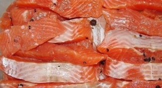 How to pickle salmon for Smoking