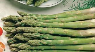 Спаржа: как готовить и с чем есть