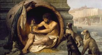 Зачем  Диоген жил в бочке