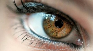What is the character of a person with brown eyes