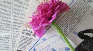 Какие ежемесячные журналы пользовались спросом в СССР