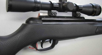 Air rifle: sighting with the purchase