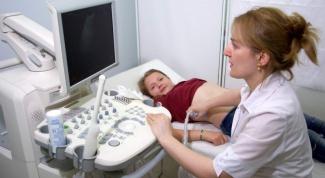Ultrasound of internal organs: a description of the procedure