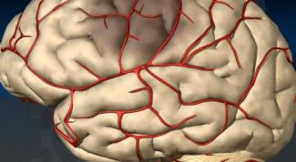 Как работают препараты, улучшающие мозговое кровообращение