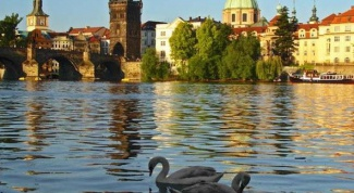 Отдых в Чехии с детьми: на что обратить внимание