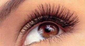 Можно ли вылечить зрение с помощью упражнений