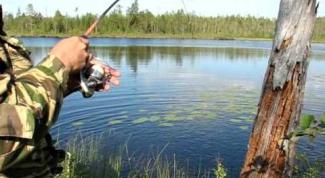 Когда и как надо рыбачить