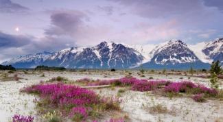 Почему Аляска принадлежит Америке