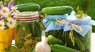 How to pickle small cucumbers