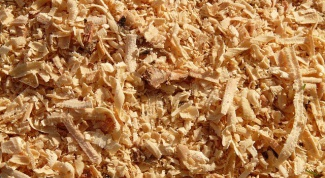How to use pine shavings as fertilizer