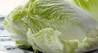 How to grow Chinese cabbage