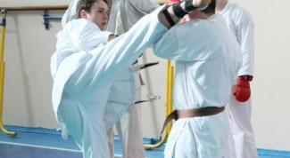 Как достичь высшего дана по карате
