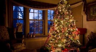 Когда ставить новогоднюю ёлку