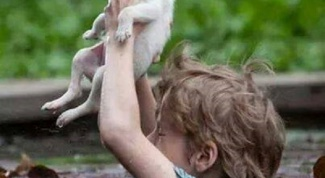 Как взрастить в ребенке милосердие