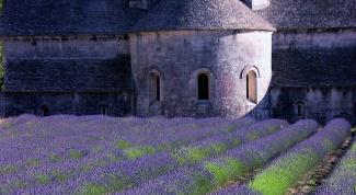 Как путешествовать по Франции