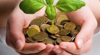 Комнатные растения, привлекающие деньги