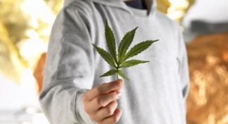 Что делать, если сын наркоман