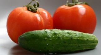Почему в одной теплице нельзя вместе сажать томаты и огурцы