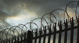 Колония строгого режима: есть ли жизнь за колючей проволокой