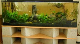 Как выбрать герметик для аквариума