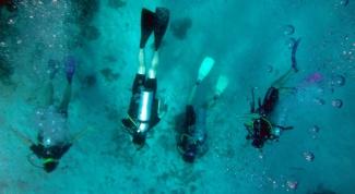 Почему в России запрещена законом подводная охота с аквалангом