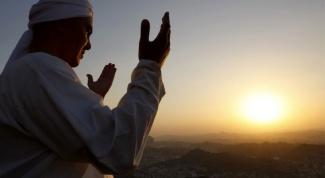 Что должен знать и соблюдать каждый мусульманин